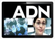 Vidéo Qui Cherche Cherche - ADN